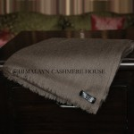 Light Brown Diamond Cashmere Pashmina Shawl